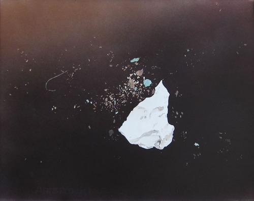 Meet a NYFA Artist: Theresa Bloise