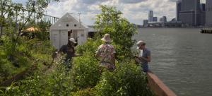 """Image: Three individuals tend to plants on Mary Mattingly's """"floating food forest,"""" Swale, with views of Lower Manhattan from its location off of Brooklyn Bridge Park."""